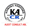AUDIT CONSULT ABL img